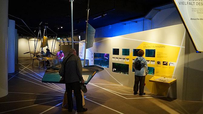Ausstellungsfläche in den Norderneyer Wattwelten