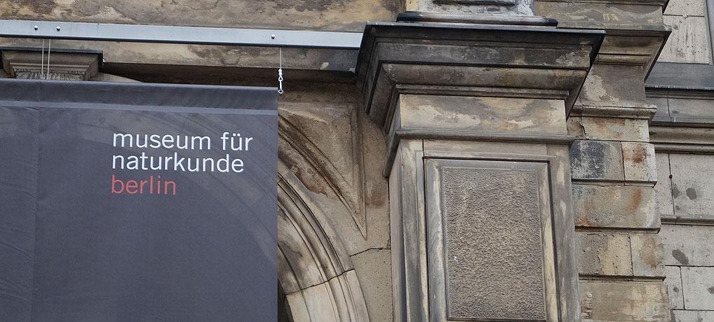 Das Naturkundemuseum in Berlin ist einen Ausflug wert.