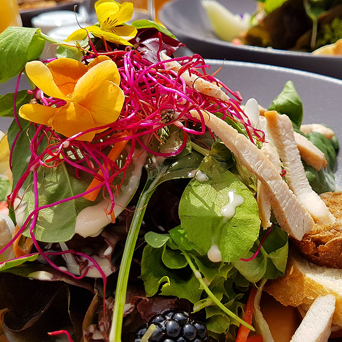 Frischer Salat im Wellnessbereich