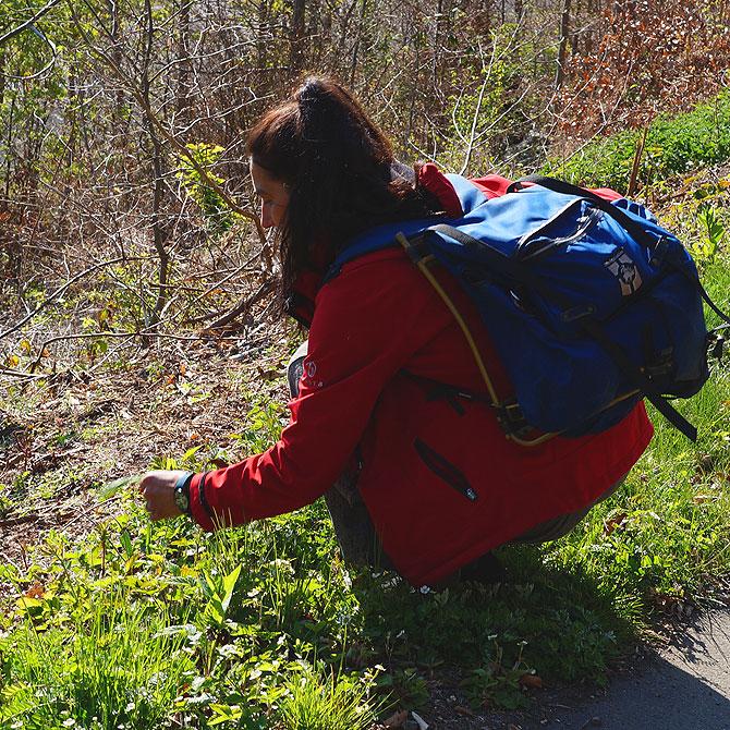 Unterwegs mit der Landschaftsmentorin am Pulvermaar
