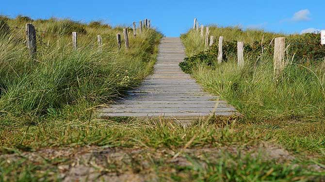 Dünen sind Urlaub auf Wangerooge