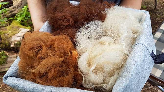 Alpakawolle und Schafwolle