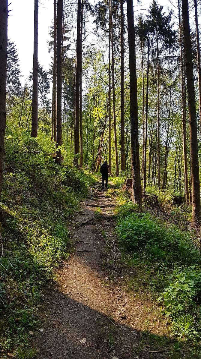 Steiler Aufstieg zur Ehrenburg Brodenbach