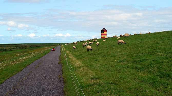 Top Kulisse: Leuchtturm, Deich, Schafe