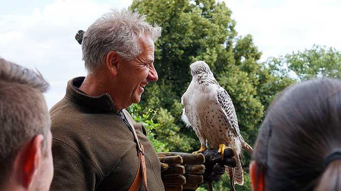 Walter ist Falkner auf Burg Ronneburg und liebt seine Greifvögel