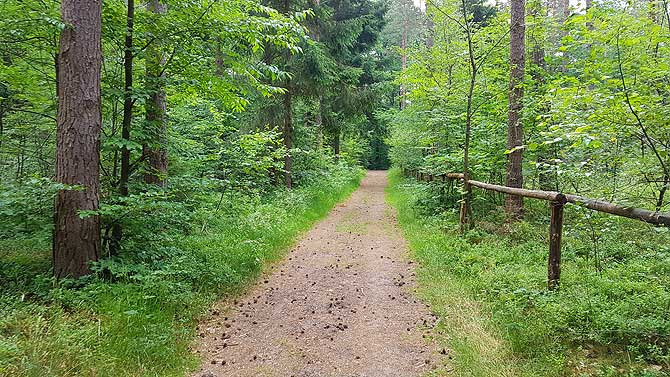 Furlbachtal im Teutoburger Wald