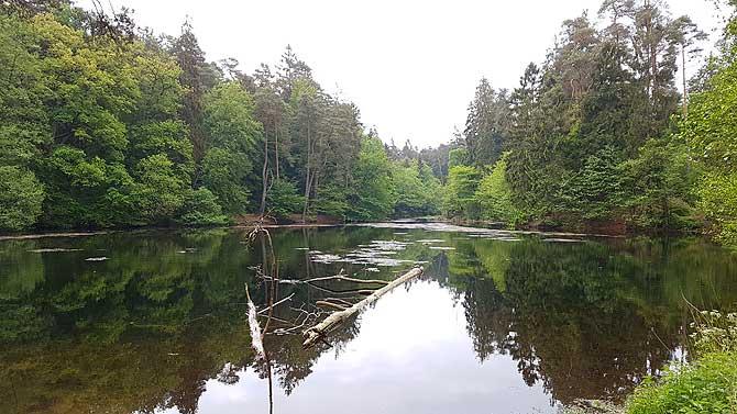 Schöner See, dessen Namen ich nicht mehr weiß
