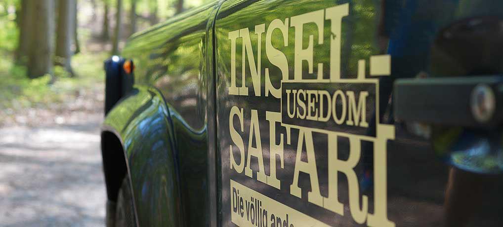 Die Insel Safari Usedom ist ein Muss bei deinem Urlaub auf der Sonneninsel
