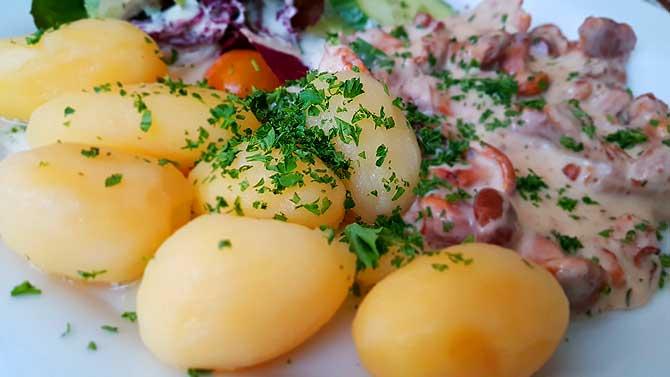 Restaurant Friedrichs Schwerin vegetarisch