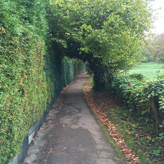 Steiler Wanderweg zum Lousberg