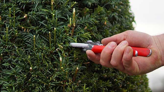 Gartenarbeit ist feines Handwerk