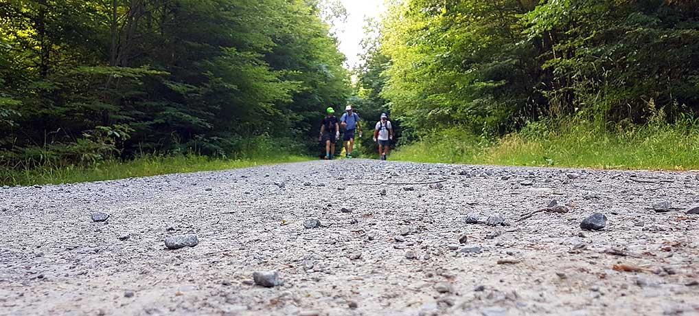 Der Wandermarathon Eppinger Linie führt über 42 Kilometer von Mühlacker bis nach Eppingen
