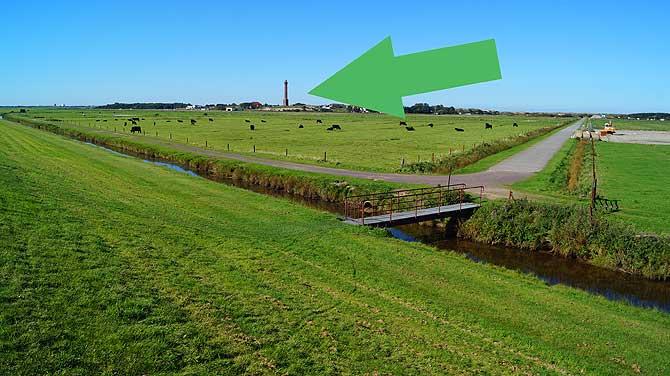 Viel Weide und der Leuchtturm von Norderney