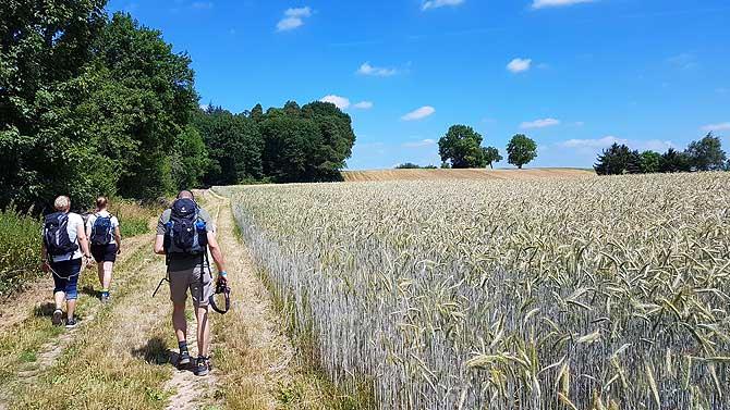Wanderer beim Wandermarathon
