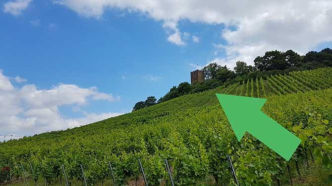 Da kommt der Schlossbergturm näher