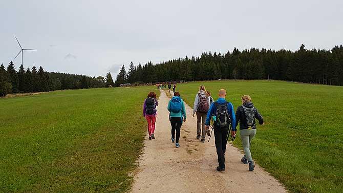 Wandern durch den Schwarzwald