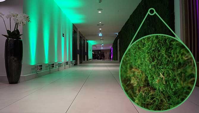 Lebendiger Rasen im Fourside Hotel