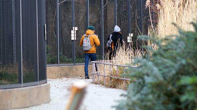 Tinder Date im Berliner Zoo