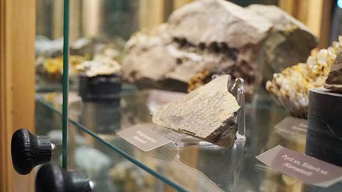 Gestein wie Schiefer im Nationalparkhaus Leutenberg