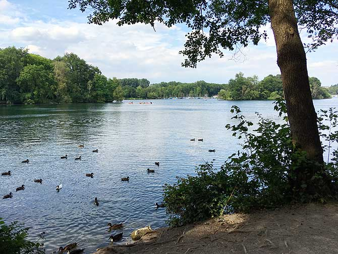 Unterbacher See und Elbsee