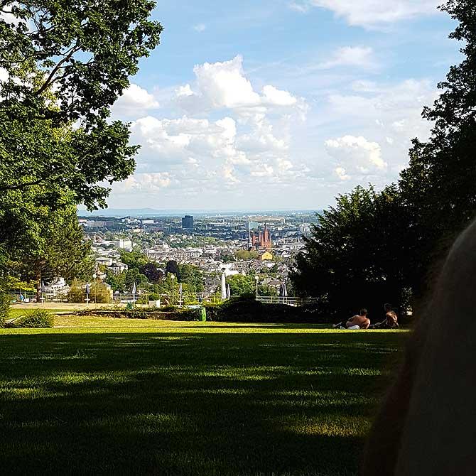 Liegewiese mit Wiesbaden Panorama