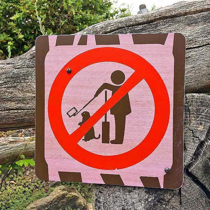 Keine Selfies mit Erdmännchen
