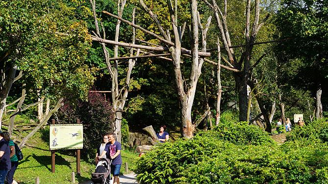 Schöne Anlage des Zoos in Münster