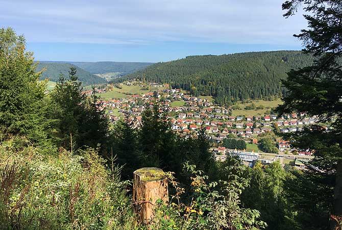 Schwarzwald-Panoramablick
