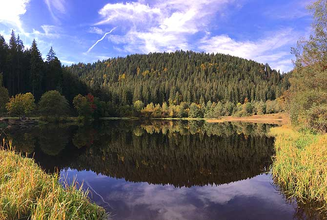 Schönstes See-Panorama auf dem Sankenbachsteig Baiersbronn