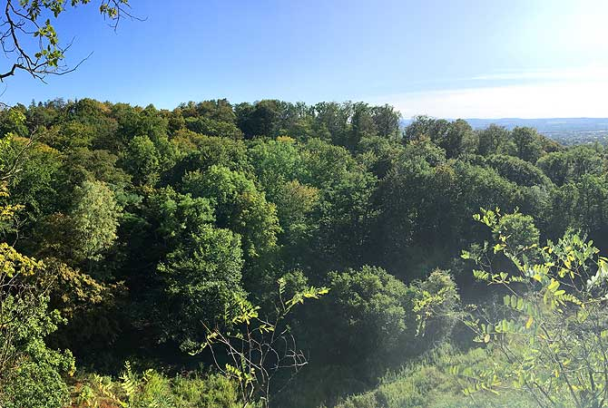 Ausblick auf die Dresdner Heide
