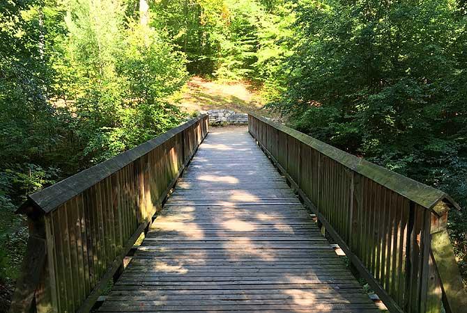 Brücke Dresdner Heide
