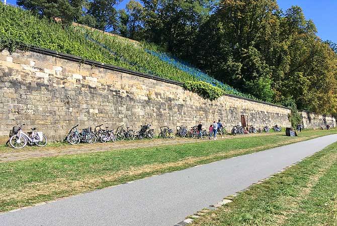 Weinberg Winzer Eingang an der Mauer