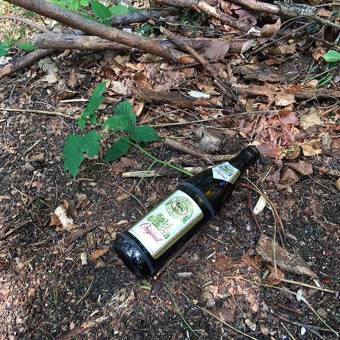 Pilz und Pils im Wald