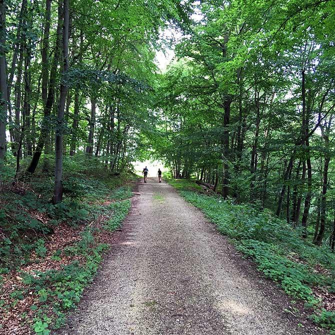 Schotterweg entlang der Route
