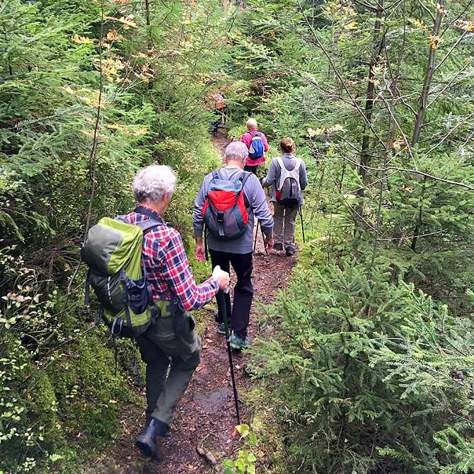 Wandergruppe am Abstieg
