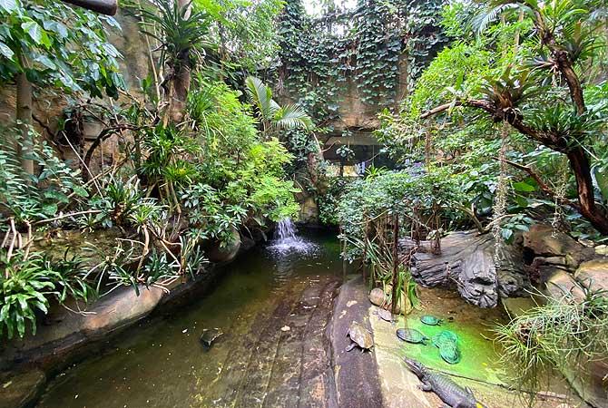 Krokodilhalle im Berliner Aquarium