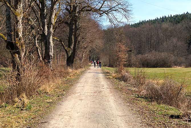 Hier treffen Wanderer auf Radfahrer