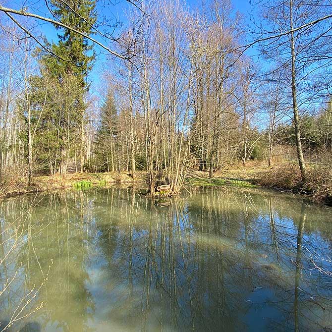 Biotop am Sickinbrunnenweg