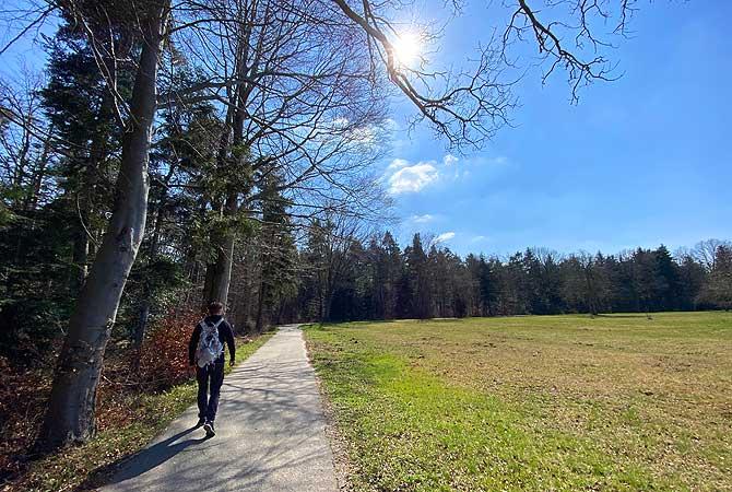 Wenig Asphalt bei der Hohenwart-Wanderung bei Pforzheim