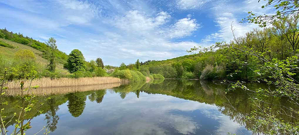 Wanderung um Großvillars führt auch zum Ausflugstipp Bernhardsweiher