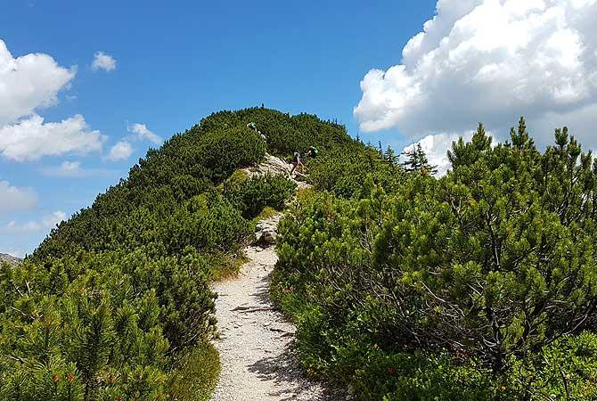 Aufstieg zum Iseler-Gipfel
