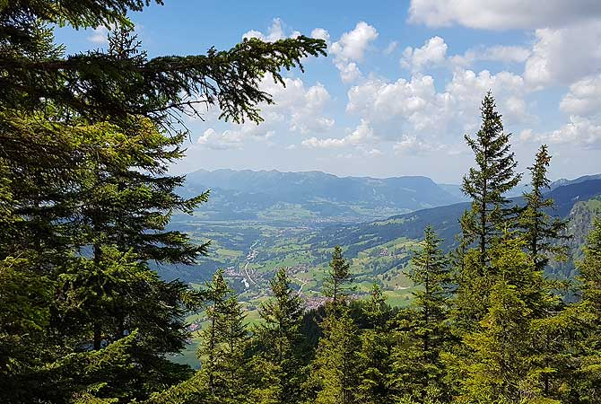 Viel Allgäuer Natur zu sehen bei einer Wanderung von Oberjoch zum Berg Iseler