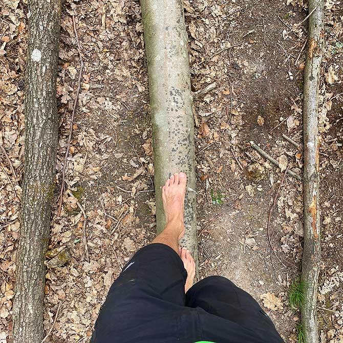 Über einen Baumstamm am Barfusspfad