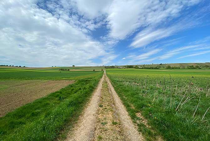 Meine Wanderung zum Derdinger Horn führt über Feld