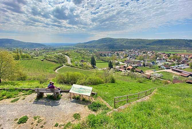 Ausblick über die Weinberge von Ochsenbach