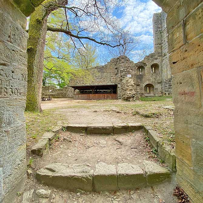 Tolle Wanderung zur Ruine Blankenhorn Güglingen