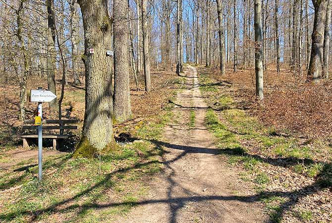 Baiselsberg bei Horrheim im Naturpark Stromberg Heuchelberg