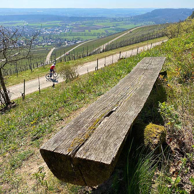 Panorama Wanderweg Horrheim
