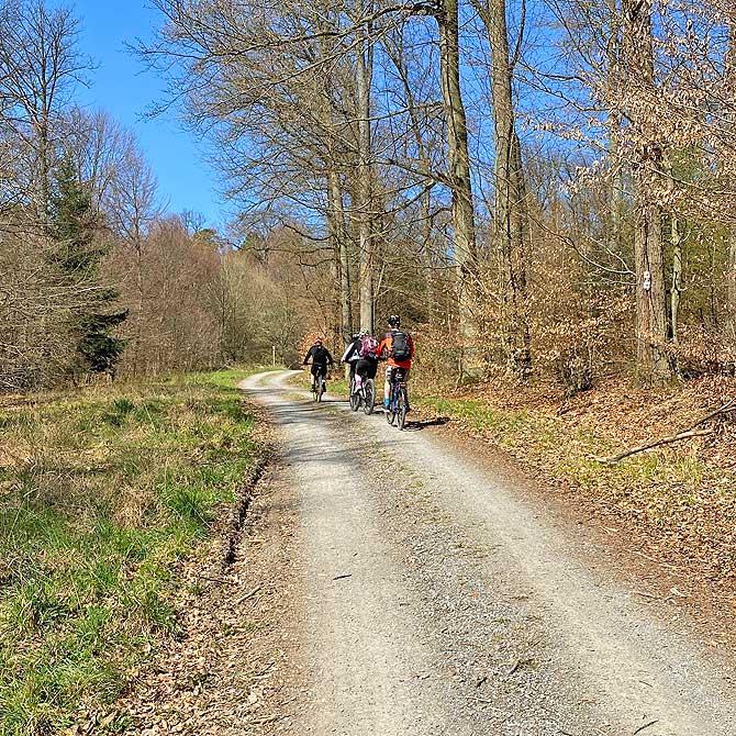 Wanderweg um die Seewaldseen von Horrheim