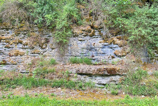 Felsiger Weg durch Rohrbachtal Steinheim